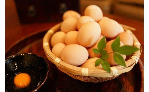名古屋コーチン卵(30個入り)